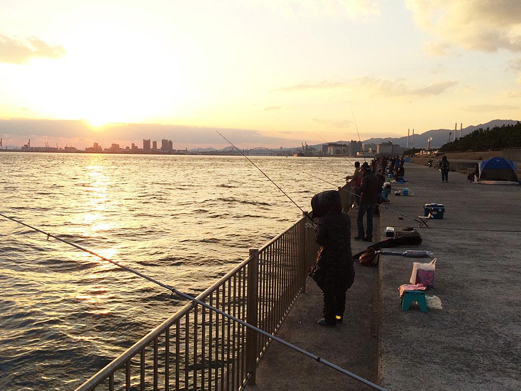 タチウオの時合いをむかえつつある関西の釣り場