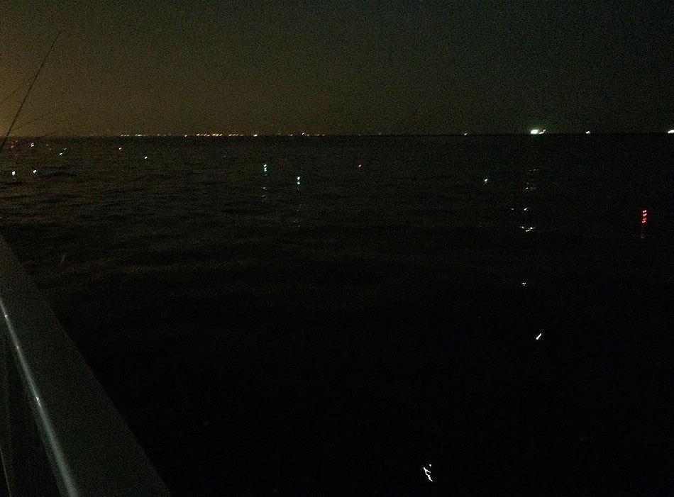 電気ウキがひしめくタチウオ釣り